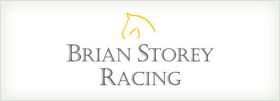 find out more about the Brian Storey Racing logo design