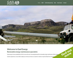 find out more about the Gael Energy website design