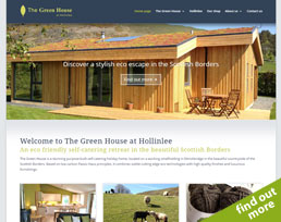 find out more about the Hollinlee website design