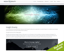 find out more about the Insight Gravity website design